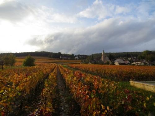 bourgogne-vin-gastronomie.jpg